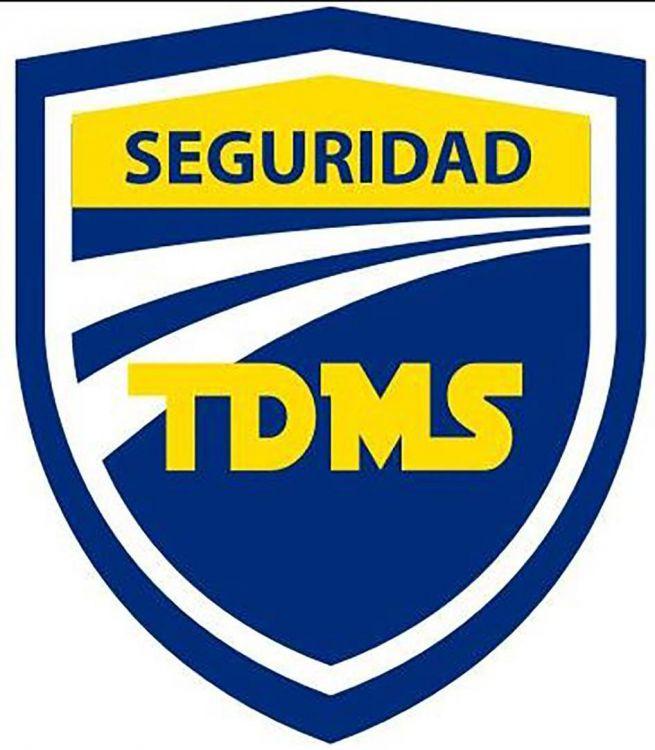 SEGURIDAD TDMS