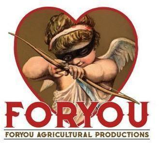 FORYOU FORYOU AGRICULTURAL PRODUCTIONS